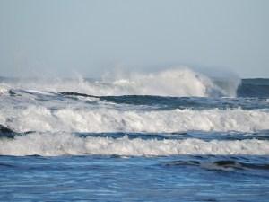 oceano Morales Fallon
