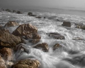 ocean Morales Fallon