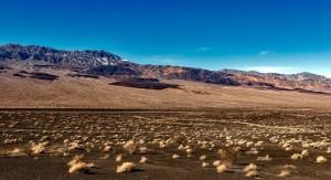 death valley Morales Fallon