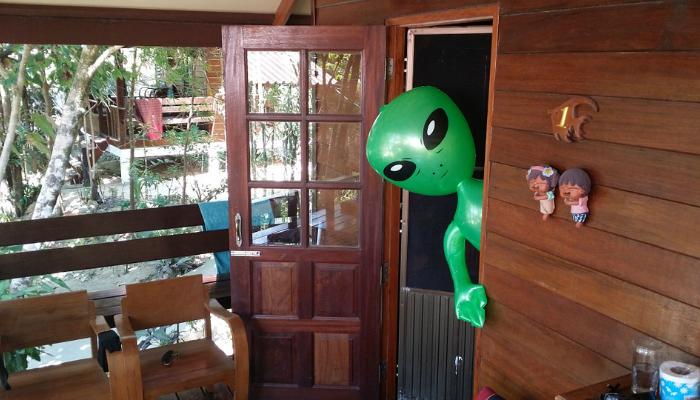 Alien in the Cabin