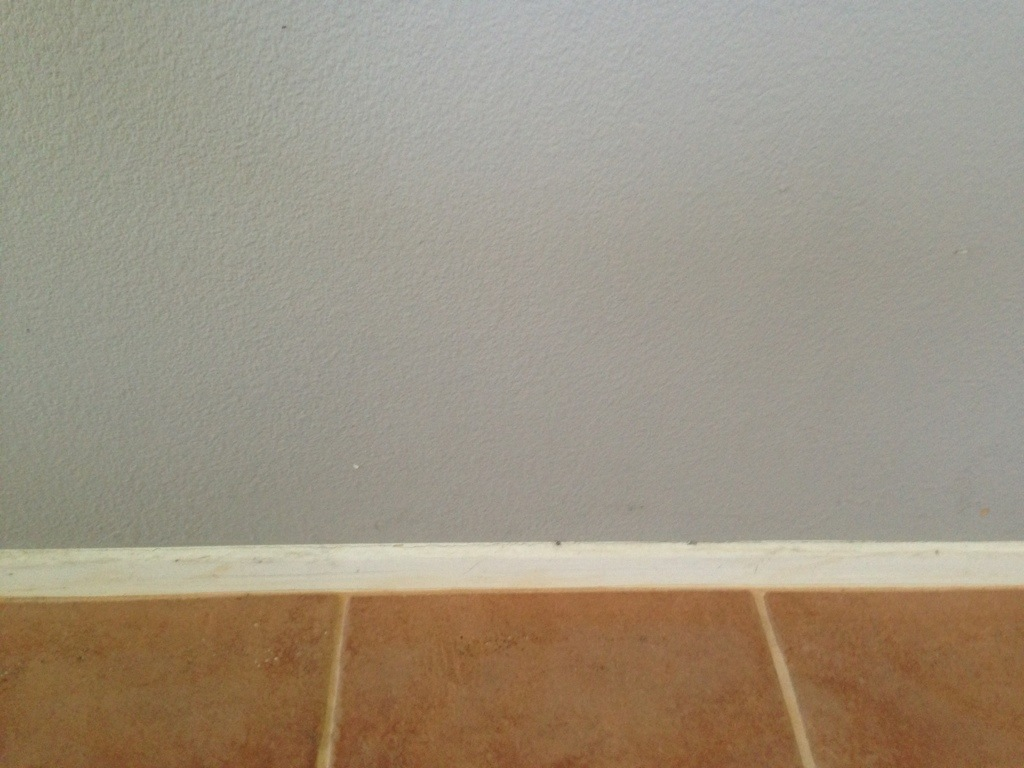 Pristine Our Completed Baseboards Gnome Lover Swiss Coffee Paint Color Behr Swiss Coffee Paint Lowes houzz 01 Swiss Coffee Paint