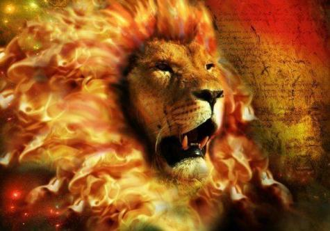 Tribe of judah lion Lost Tribe of Judah Found: The Bedas