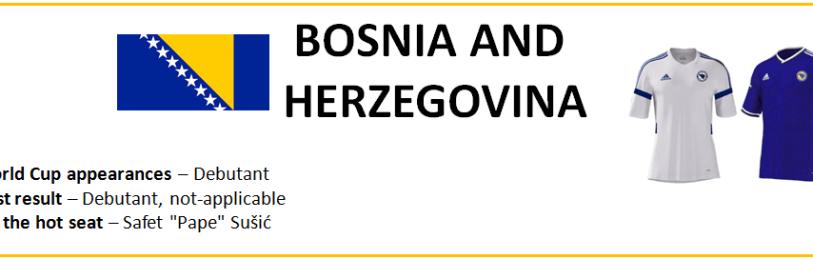BosniaSumm