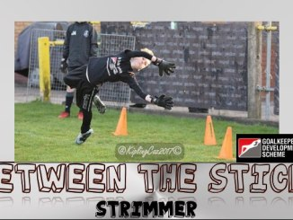GDS Between the Sticks Strimmer