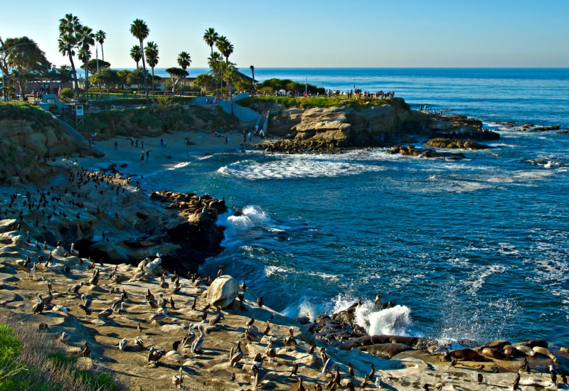La_Jolla_Cove_view