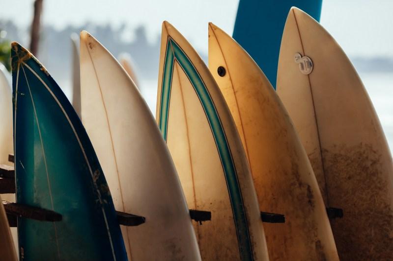 surfing in san diego 5