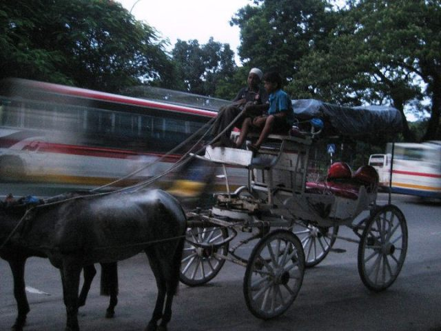 Buses speeding past a lone horse and buggy.