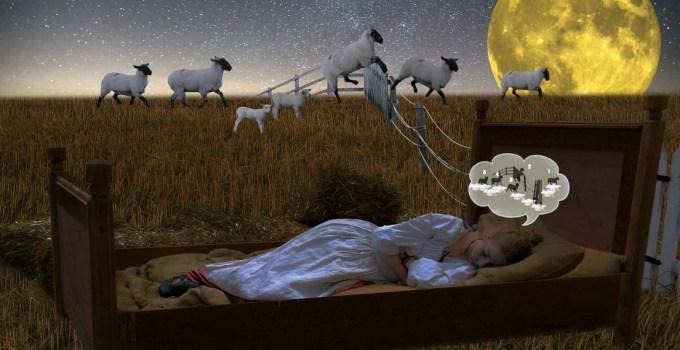Jet lag: rimedi naturali per tornare a dormire bene dopo le ferie
