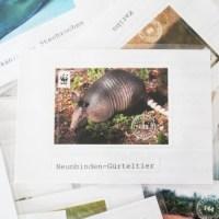 Tierkarten, Rewe, Edeka, Aufkleber, Sammelkarten, DIY, Upcycling, Basteln, Recycling, Crafting