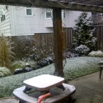 Snow in Portland 2