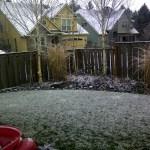 Snow in Portland 3