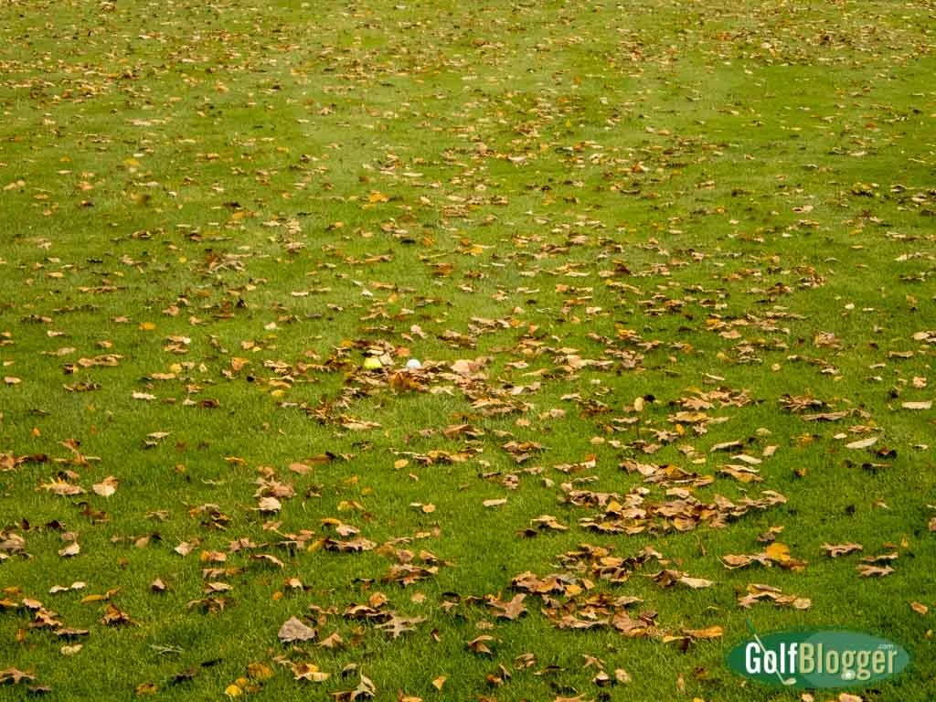 What Golf Ball Color is Best For Fall Rounds?