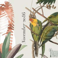 Tennessee Williams Dangerous Birds