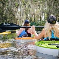 Kayaking in the bayous