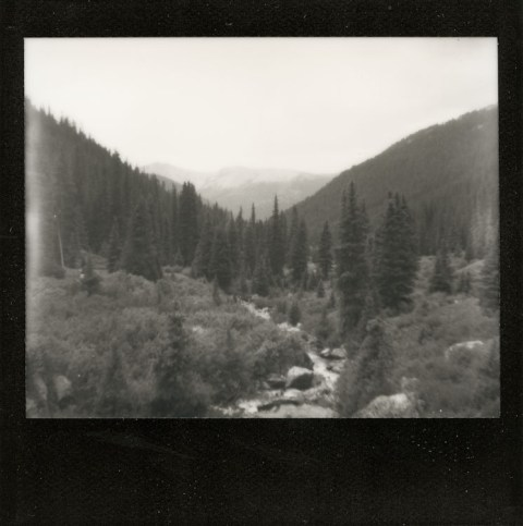 Photo: Synthia Goode - Lost Man Loop Trail - Spectra SE - Impossible Project Black Frame PZ600