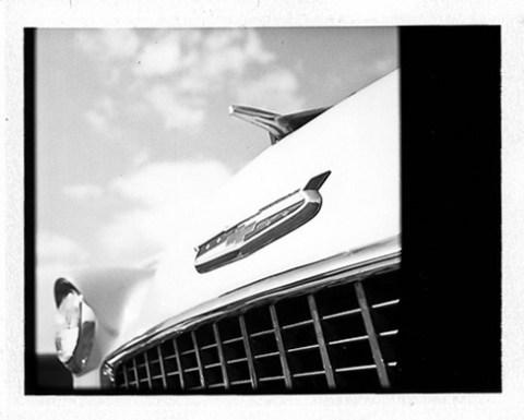 Mamiya RB67 + NPC Polaroid Back - Fuji FP-100B