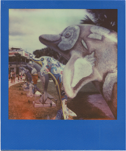 Photo: Annie Donovan - Polaroid One 600 - Impossible Project PX-70 NIGO