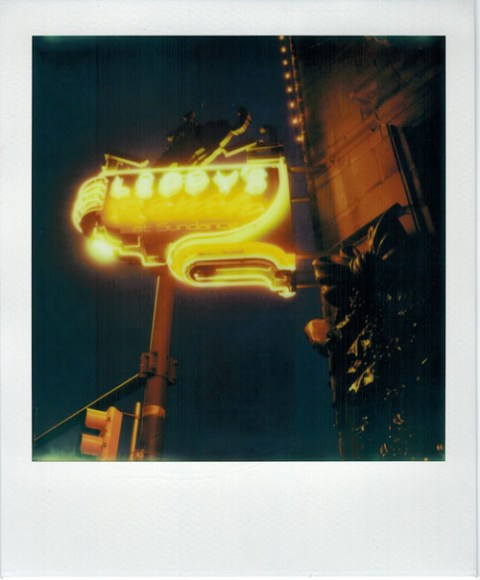 Photo: Christian Oliveira - Polaroid Alpha SX-70 - Impossible Project PX-680 CP + ND