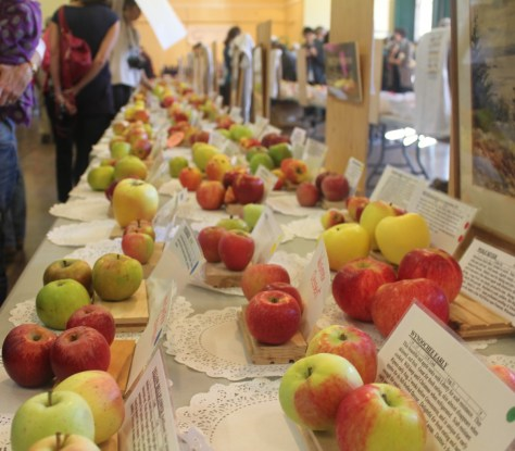 Salt Spring Apple Festival