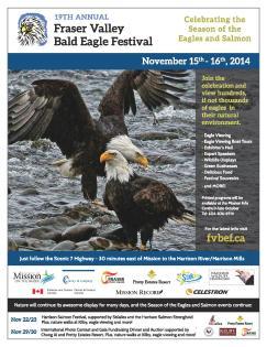 bald eagle-2014-1018-print-page-001