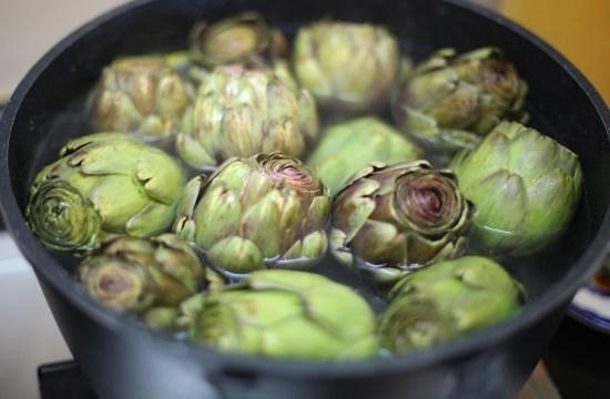 artichoke in pot