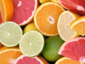 gnn citrus_fruits