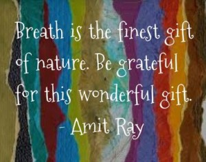 amit ray gratitude breath quote