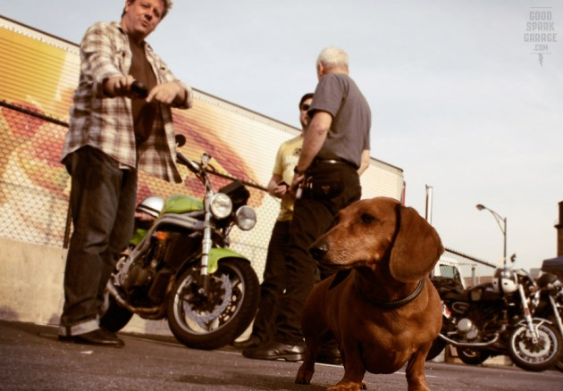 Ace Motorcycle & Scooter Co. Doggy