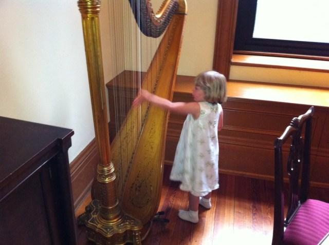 Wfp-sum11-grad-harpist