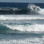 Surfing Middles Isabela Puerto Rico 10