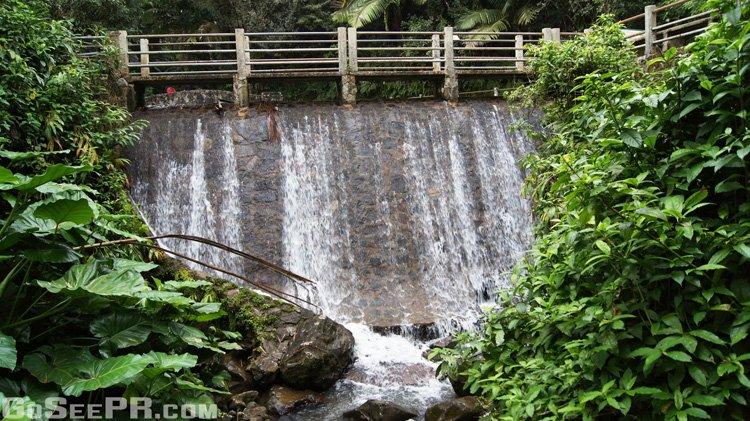 Bano grande pool in el yunque national forest puerto rico for Bano de oro el yunque