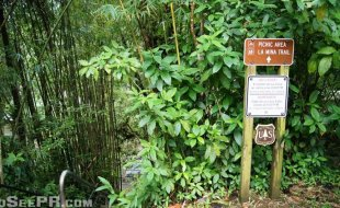 La Mina Trailhead El Yunque National Forest