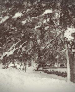 Зима. Изя Шлосберг