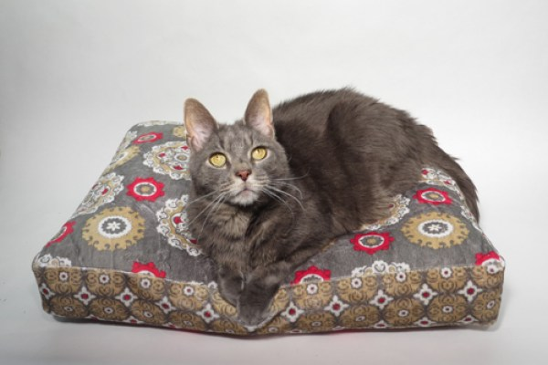 Pamper your precious pet with this easy-to-sew pet bed tutorial from Sew Mama Sew---the perfect size for small cats and dogs. -Sewtorial