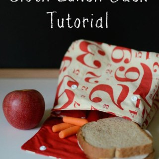 Make some really cool lunch carriers for your favorite snackers. Try this fun cloth lunch sack tutorial by If Only They Would Nap. -Sewtorial