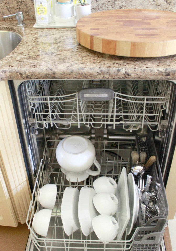 Thanksgiving Dishwasher