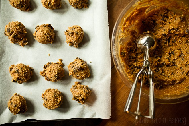 Chocolate Chip Peanut Butter Cookies 15:: Granola Girl Bakes