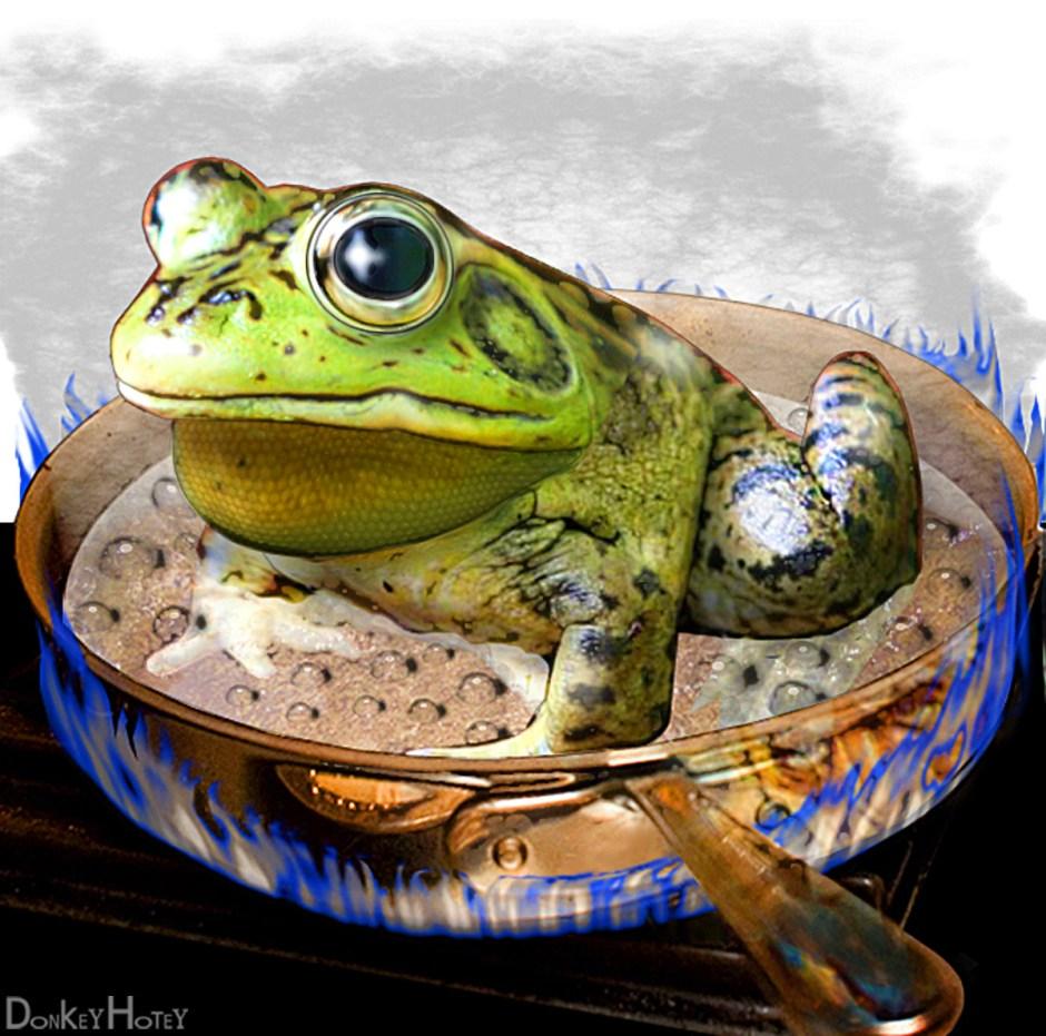 Boiling Frog CC BY DonkeyHotey