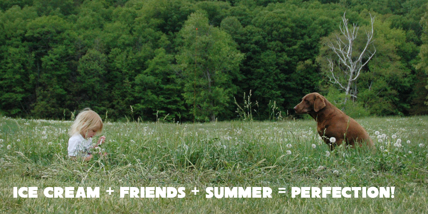 Summer and Friends