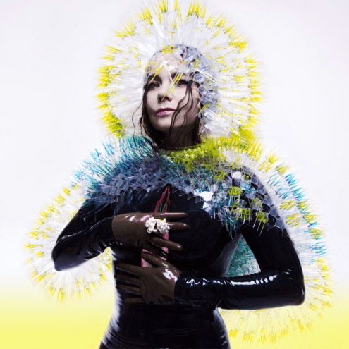 Björk's Vulnicura: First Listen