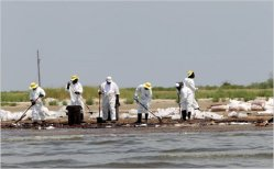 Cleanup workers toiling on the beach at Grand Isle, La.
