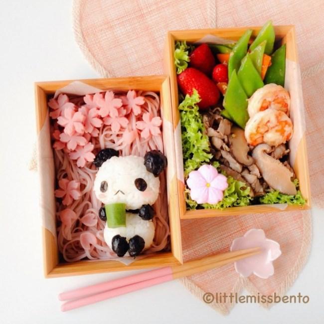 little ms bento Panda Sakura Hanami