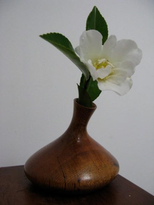 flower + vase