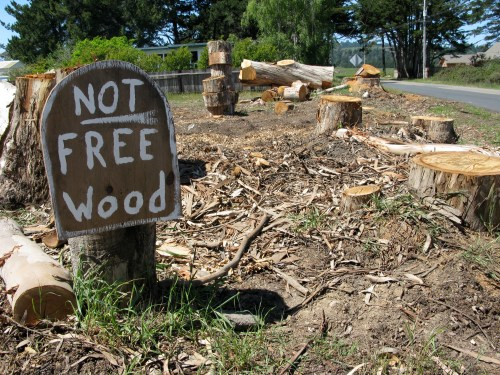 Not Free Wood
