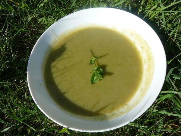 zupa z chwastami1