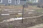 firehouse-community-garden
