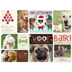 Splendid Ny Dog Card Sayings Merry Happy New Dog Cards Walgreens Dog Cards 2017