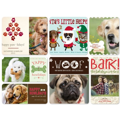 Medium Crop Of Dog Christmas Cards