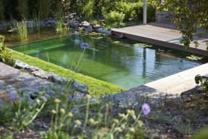 Плавательный пруд у дома