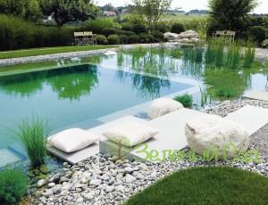 Декоративный водоем для плавания